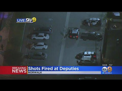 sheriffs deputies fired dozens - 480×360