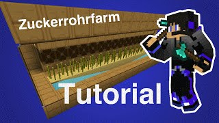Vollautomatische Sugarcane Farm in Minecraft Vanilla || Tutorial || PalmLP