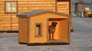 Риджбек на производстве домиков для собак. Цена домика в СПб 10.300 руб.