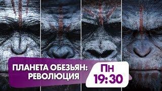 """""""Планета обезьян: Революция"""" сегодня в 19:30 на НТК"""