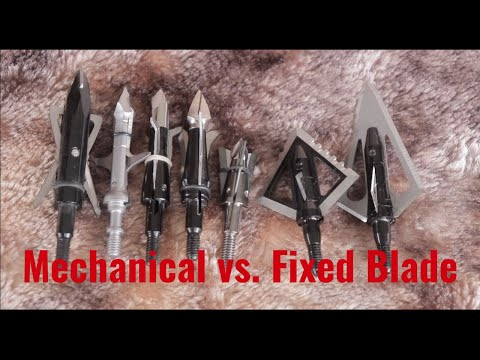 Broadheads: Fixed Blades Are Just BETTER!