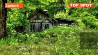 6 Hutan Paling Angker di Dunia