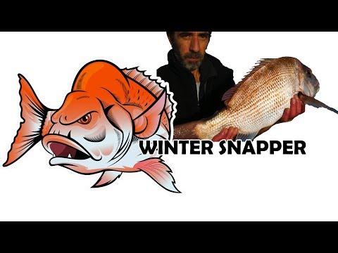 Fishing Victoria's Port Phillip Bay Melbourne Australia Catching Snapper