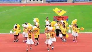 筲東第50屆周年陸運會黃社啦啦隊表演