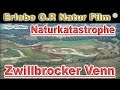 Zwillbrocker Venn Naturkatastrophe 2019 Flamingo Und Co In Not - Natural Disaster - 1080 HD -