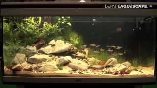 JBL Biotope Aquarium Contest 2013 - compilation