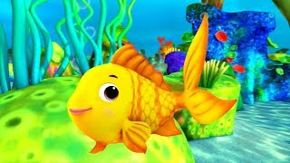 Cá Vàng Bơi, Một con vịt - Nhạc thiếu nhi remix sôi động vui nhộn