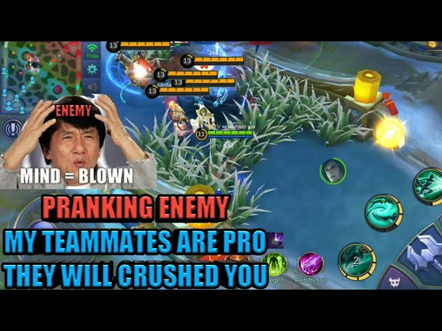 MY TEAMMATES ARE PRO PRANK | FUNNY GAME | MOBILE LEGENDS