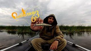 НЕРЕАЛЬНО МНОГО ПОКЛЕВОК НО. рыбалка на спиннинг в пасмурную погоду