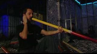Didgeridoo Bologna Live: Nuovo Giorno