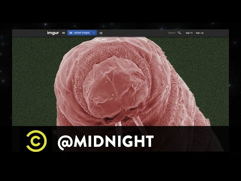Kate Micucci, David Koechner & Will Sasso - Electron Microdopes - @midnight with Chris Hardwick