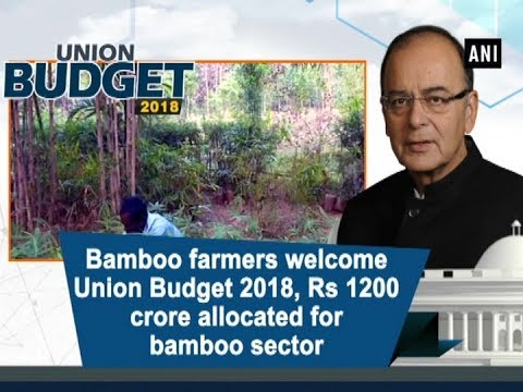 Bamboo farmers welcome Union Budget 2018, Rs 1200 crore allocated for bamboo sector - Tripura News