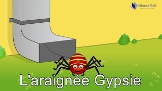 L'araignée Gypsie | Itsy Bitsy Spider in French with subtitles | A Dona Aranha em francês