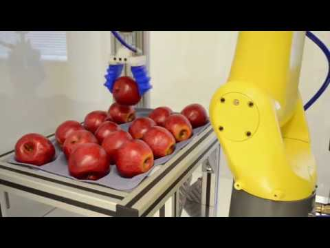 Apple Picking Robot Uses Soft Robotics Gripper Fanuc 3d Vision To