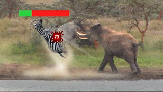 Are Elephants OP?