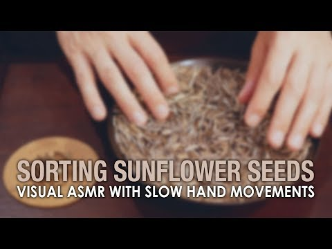 VISUAL ASMR in 4K with Slow Hand Movements Sorting Sunflower Seeds