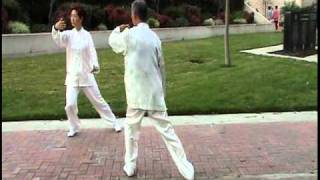 Two people mirror Tai Chi form 8
