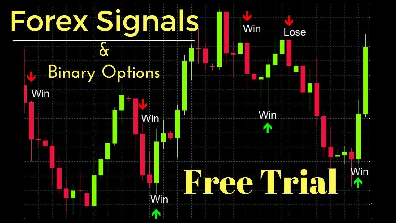iq option trading course skaitmeninės valiutos dvejetainiai variantai