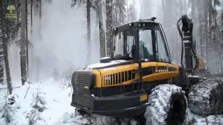 видео Деревянные дома из зимнего леса