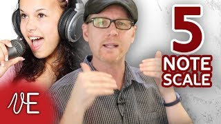 BEST beginner SINGING exercise | The 5 Note Scale | #DrDan 🎤
