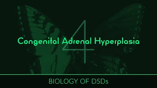 Join Chris on his journey to learn what a genetic disorder is, how congenital adrenal hyperplasia (C.