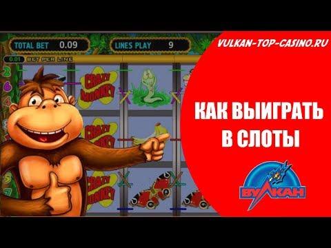 Способ выиграть в игровые автоматы. Тактика игры в слот Обезьянки