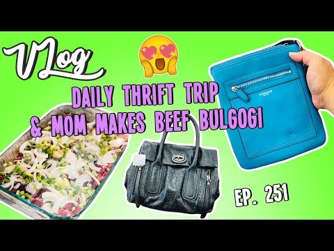 DAILY THRIFT TRIP & MOM MAKES BEEF BULGOGI | VLOG EP. 251