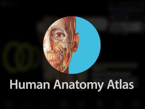Complete Anatomy App