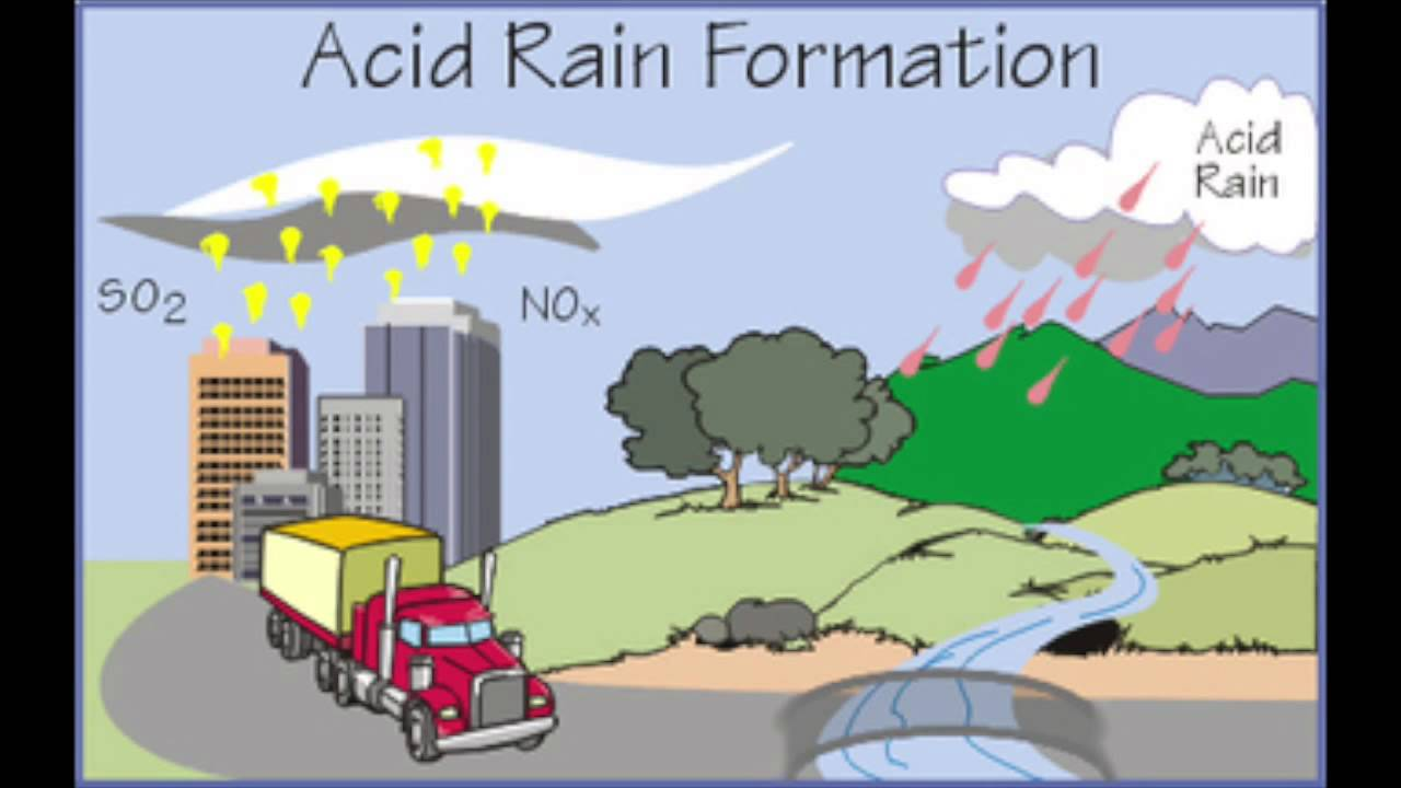 acid rain webquest 1 Hands-on activity: acid (and base) rainbows contributed by:  acid rain is an environmental problem that concerns many environmental and chemical engineers.