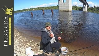 Поездка на рыбалку на реку Волхов