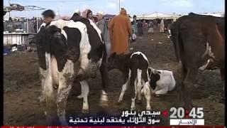 سيدي بنور: سوق الثلاثاء من بين أكبر الأسواق الوطنية