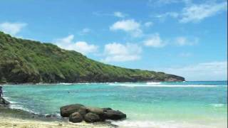 "Hanauma Bay - ""wind Beneath My Wings"" Israel Kaʻanoʻi Kamakawiwoʻole"