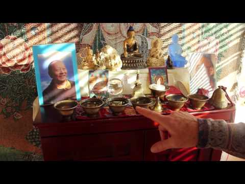 American Buddhism in Bloom