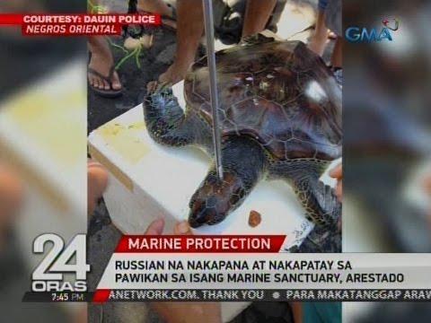 24 Oras: Russian na nakapana at nakapatay sa pawikan sa isang marine sanctuary, arestado
