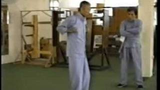 Wing Chun - Master Tsui Sheung Tin (Chu Shong Tin) intro to SNT