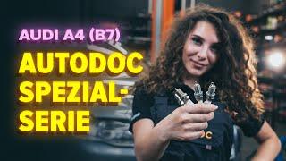 Wie Radzylinder AUDI A4 (8EC, B7) wechseln - Online-Video kostenlos