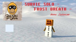Survie Minecraft Solo FR - Frost Breath #7