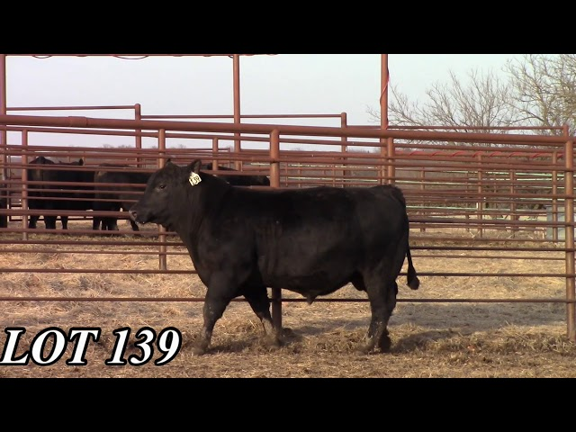 Mead Angus Farms Lot 139