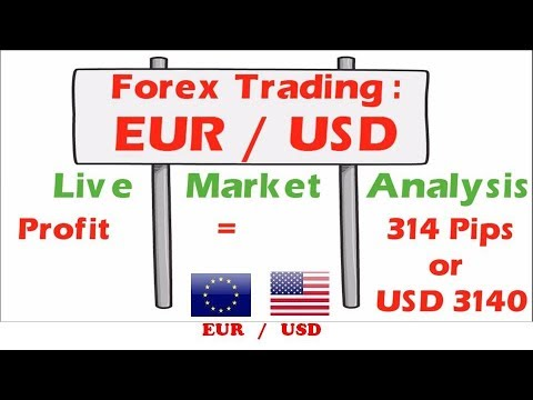 Forex Trading Eur Usd Best Strategy Live Chart Profit