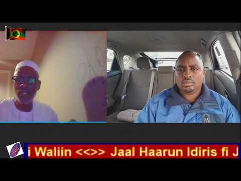 Jaal Haaruun Idris fi Jaal Gurmeessaa Sabaa Miseensa WBO duraanii