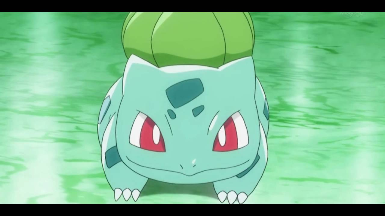 bulbasaur pokémon youtube