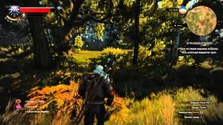 """The Witcher 3 Wild Hunt прохождение DLC """"Где кот и волк играют"""" (без комментариев)"""