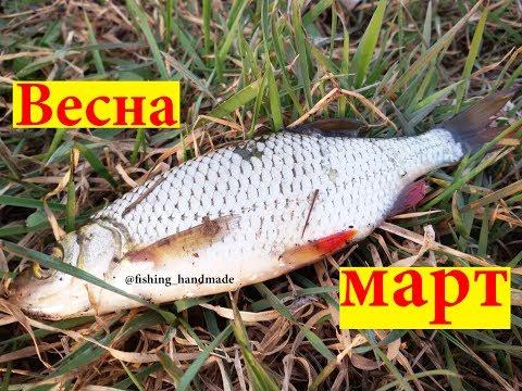 На что ловить рыбу ранней весной