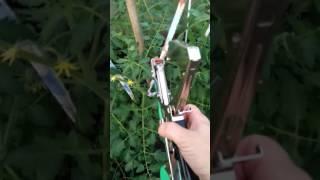 видео Материалы для подвязки растений