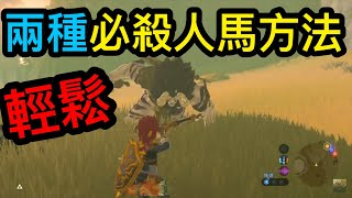 【The Legend of Zelda : Breath of the Wild】Introduce the most powerful weapon in this game