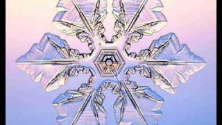 Winter Wonderland: Jason Mraz