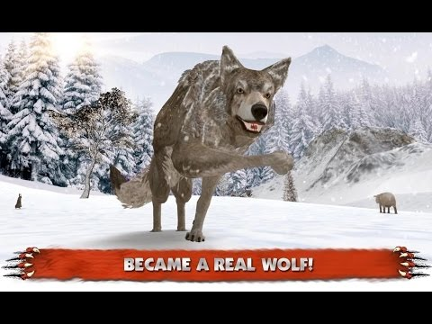 Wolf Simulator Extreme - Android Gameplay HD