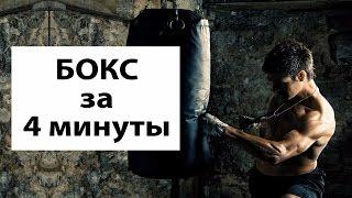 Мои тренировки по боксу | Веселый клип о боксерских тренировках