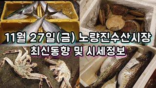 제철 대방어, 생굴, 등 최신 시세동향! 11월 27일…