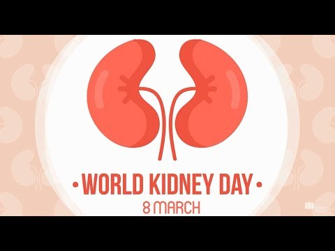 World Kidney Day   Mater Private